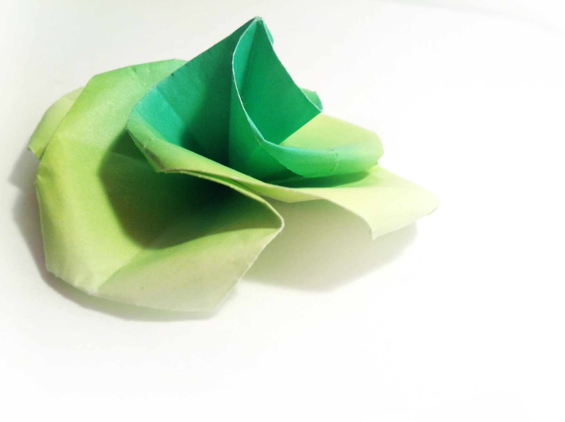 Green Swirl Origami Rose by Carrie Gates