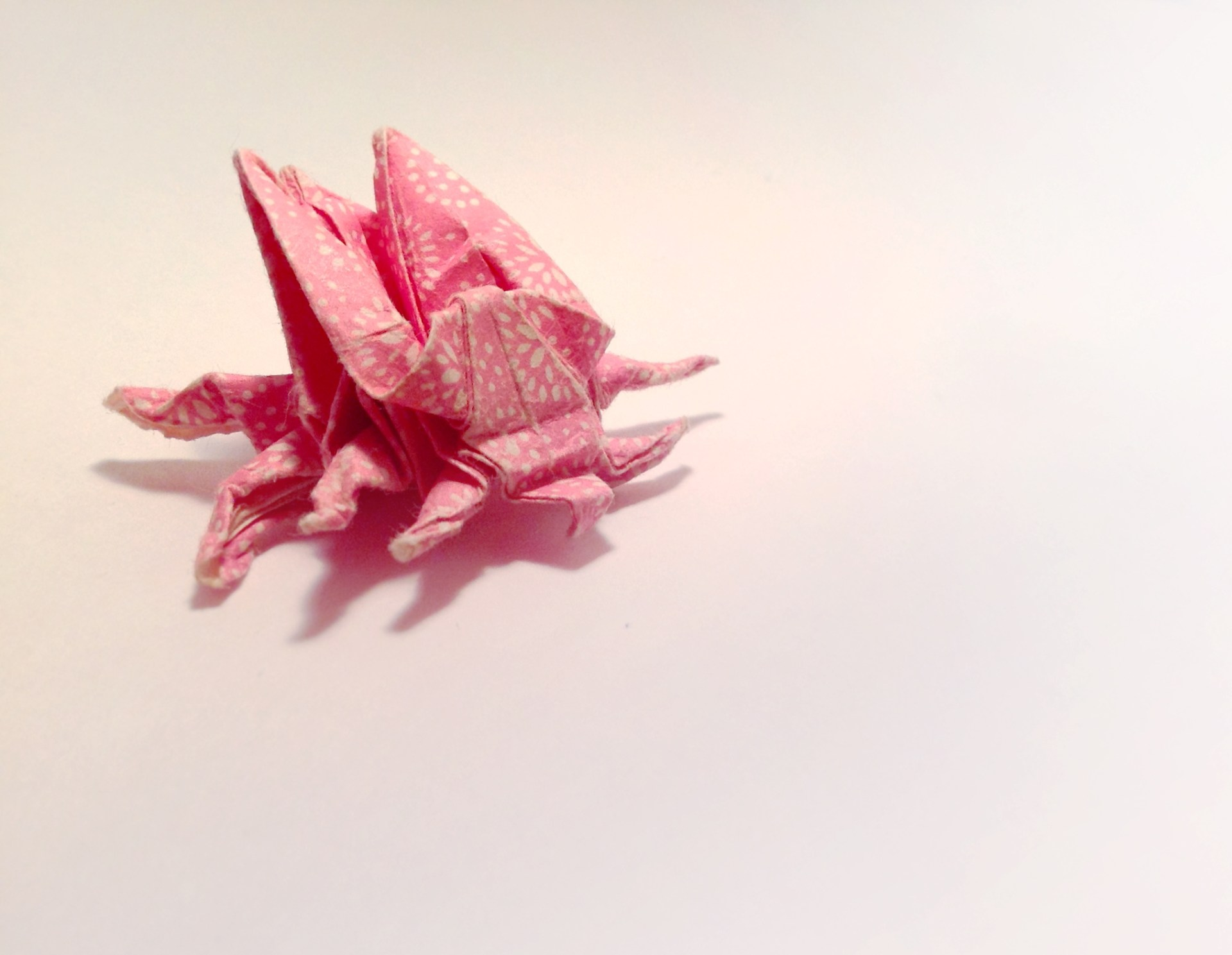 Pink Bug Origami by Carrie Gate