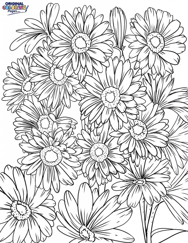 Daisy Flowers Coloring Page Coloring Pages Original