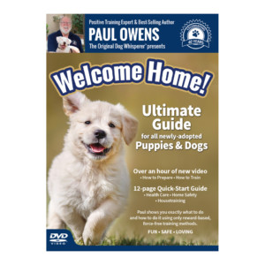 odw-welcome-home-cover-site