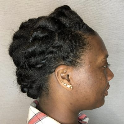 Braided hair picture (protective style).