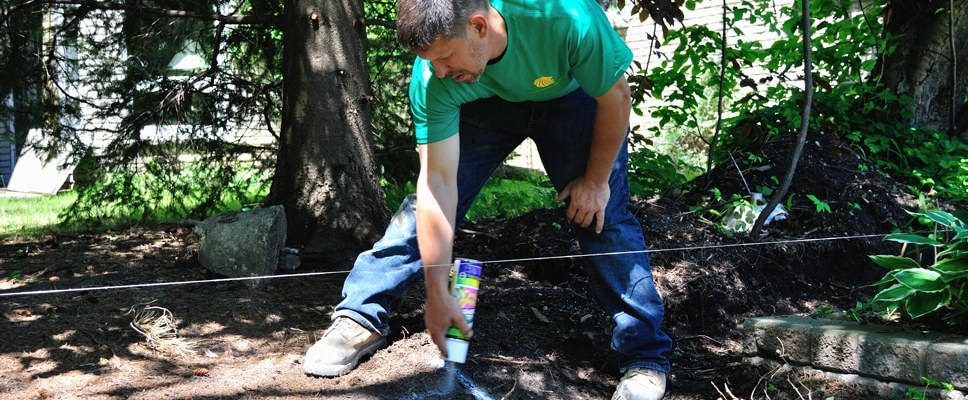 marking the posthole locations