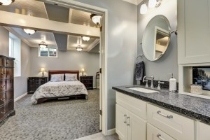 Basement with Bedroom and Bathroom in Beautiful Blue, Grey and White tones