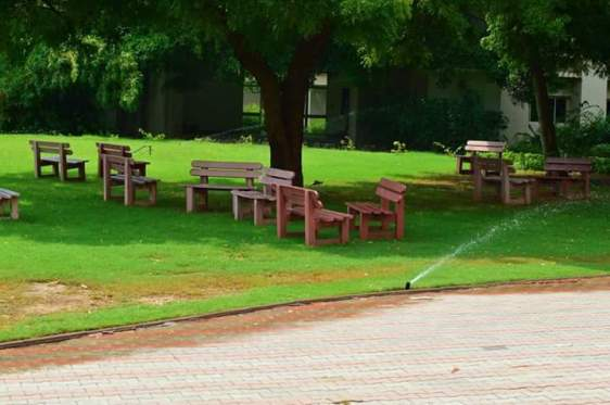 Lawns outside the lecture theatre
