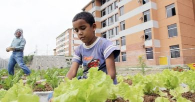 Sanctions that Cause Hunger and Kill - Join a Food Sovereignty Delegation to Caracas (August-19 to 28 -2019)