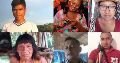 In Memoriam: 28 Indigenous Rights Defenders Murdered in Latin America in 2019