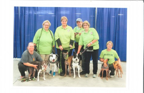 No Speed Limit (the Light Speed team) wins Division X at the NAFA's 2014 CanAM Classic ! Team members were: Wanda Landis with Heidi, Pat Parkent with Phoenix, Carle Lee Detweiler with Pesto, Bill Parkent - Boxloader, Nancy Anderson with Tejano, Patti Farnsworth with Feather and Foreman