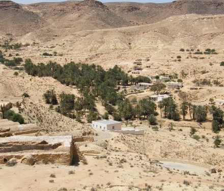 Voyage en Tunisie – 2010