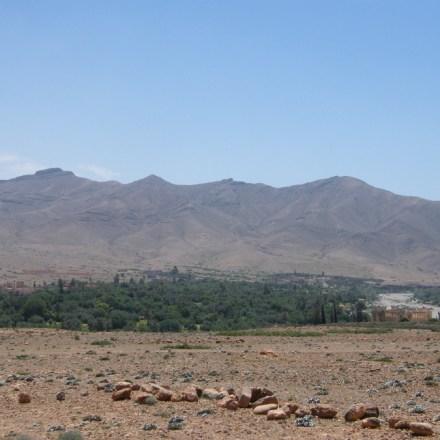 Oasis et montagnes