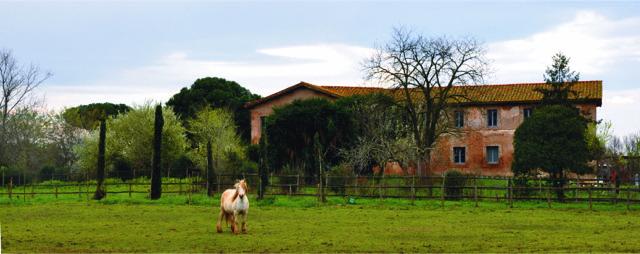 Dimore Storiche Lazio 2019, Casale delle Vignacce