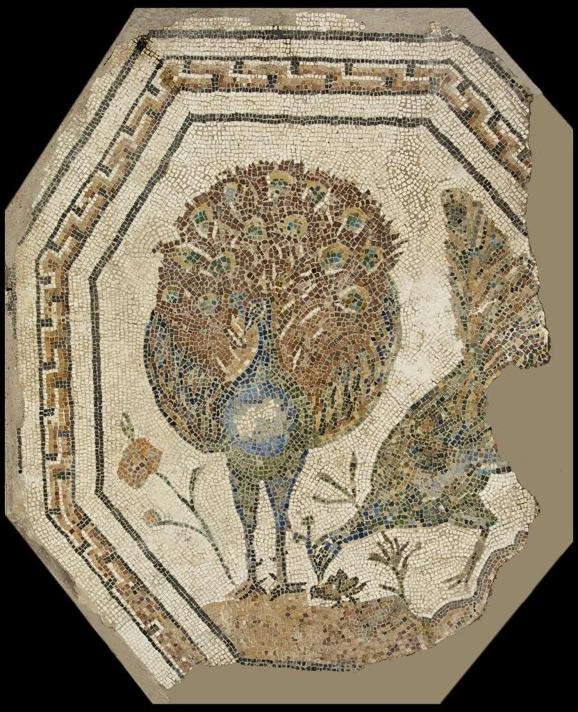 Mosaico policromo ottagonale con pavoni, colori dei romani Centrale Montemartini