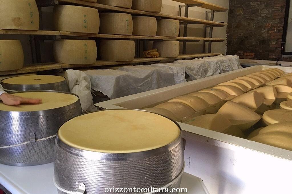 Le fasi di stagionatura del Parmigiano Reggiano presso la Società Agricola Saliceto, cosa mangiare a Parma