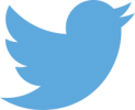 Patrick Colgan Twitter Profile