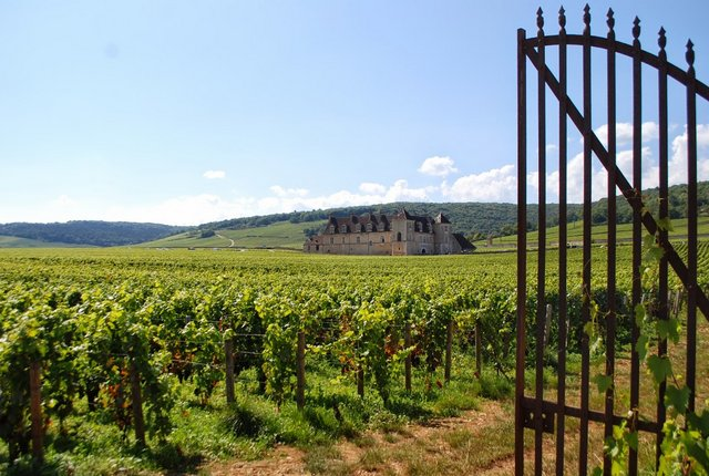 Viaggio in Borgogna: lo Chateau du Clos de Vougeot (foto di Patrick Colgan, 2014)