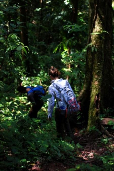 Trekking in Laos: la giungla