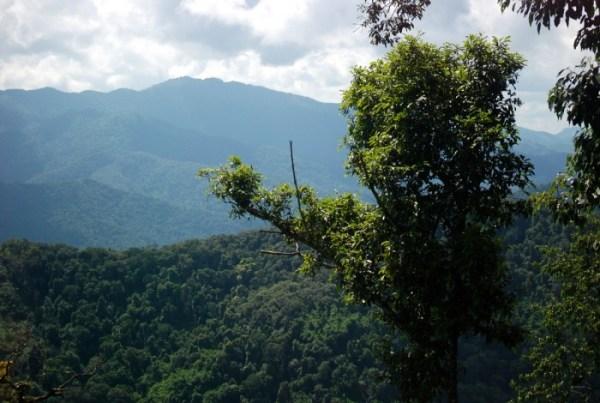 Nam Ha, Luang Namtha