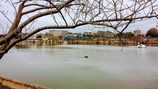 Il lago Senba, Mito