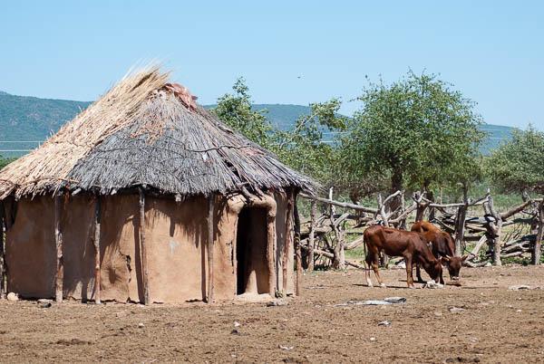 Visita a un villaggio Himba (foto di Patrick Colgan, 2017)