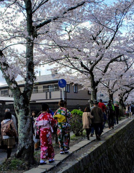 Il sentiero della Filosofia, Kyoto