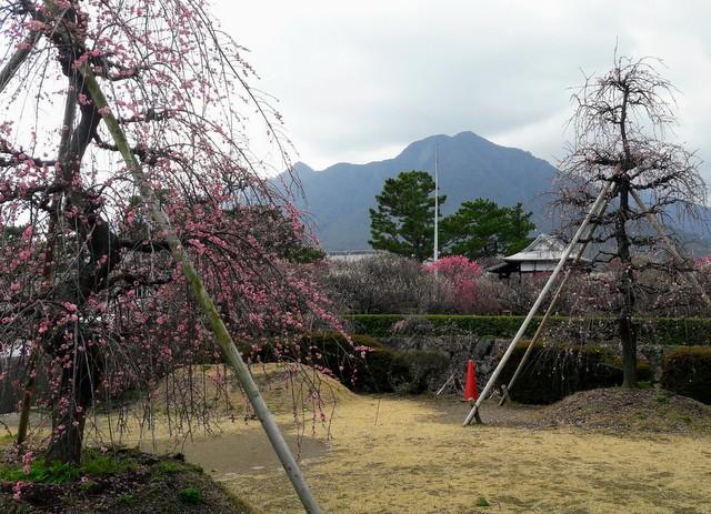 Mount Unzen from Shimabara