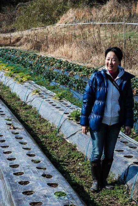 Fusako in uno dei campi della fattoria Maruka