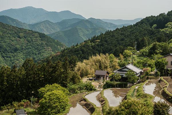 Le risaie di Takahara