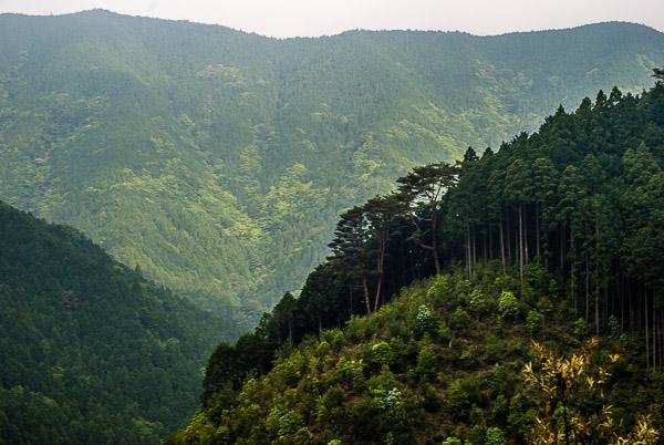 Le montagne della penisola di Kii
