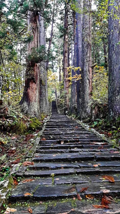 la salita verso il monte Haguro