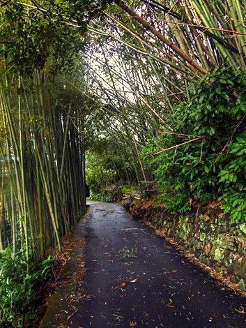 Un tratto del percorso a Kameoka