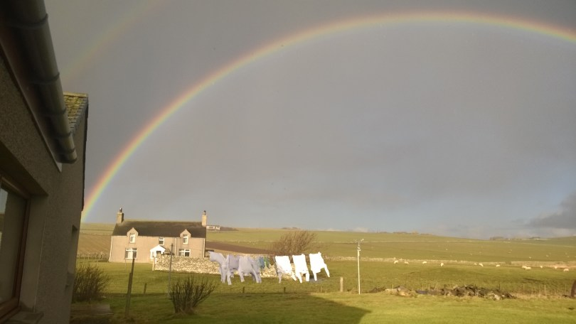 Rainbow (and washing)