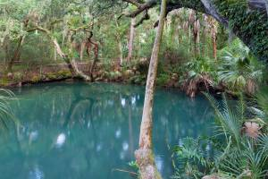 Deltona Green Springs Park