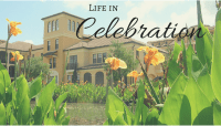 Life in Celebration Florida
