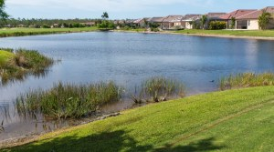 Tavares FL Homes for Sale