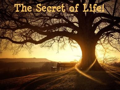 the secret of life-orlando espinosa
