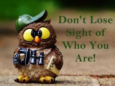 don't lose sight owl_figurine_cap_binoculars_orlando espinosa