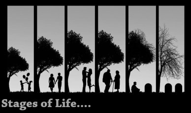 stages of life orlando espinosa