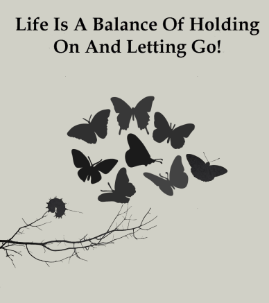 Life-is-a-balance-of-holding-on-and-letting-go orlando espinosa