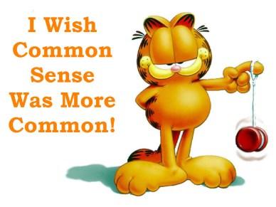 common sense is orlando espinosa garfield
