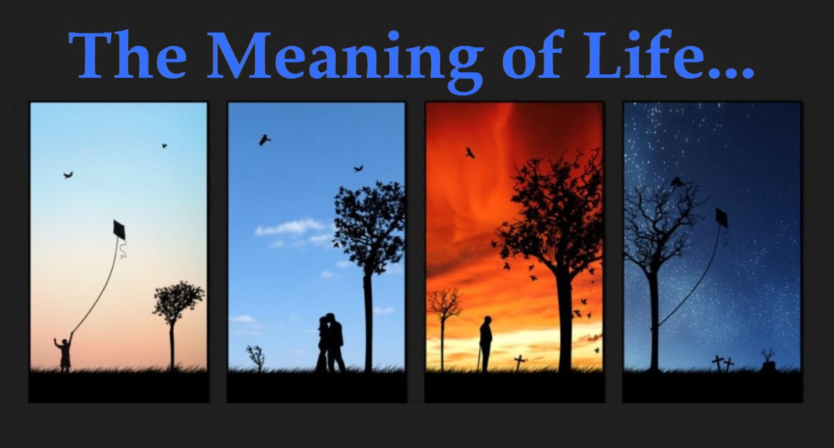 The Meaning Of Life  Orlando Espinosa