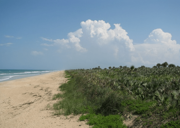 Playalinda has beautiful sand dunes that feel like you're in an isolated beautiful island.