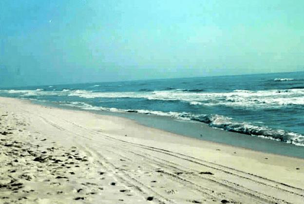 Orlando hipster sapphire beach