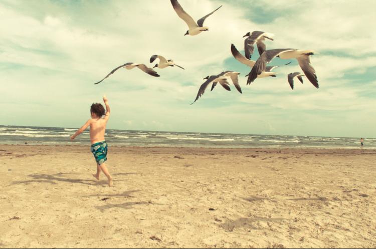 Orlando Florida Beaches