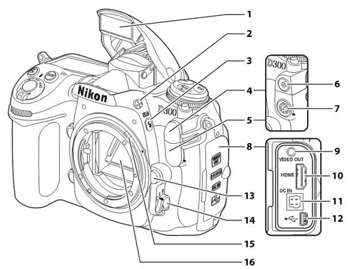 Tips básicos de fotografía
