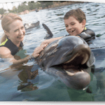 3 days only – Discovery Cove package $189