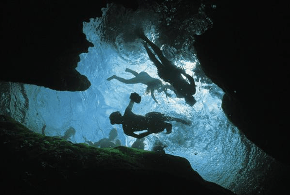 Central Florida Springs: image of people diving in the water at the springs