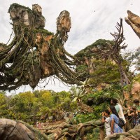 RUMOUR: James Cameron Pushing for Expansion of Pandora – The World of Avatar at Disney's Animal Kingdom