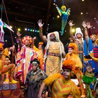 Modified Version of Festival of the Lion King Returning to Disney's Animal Kingdom This Summer
