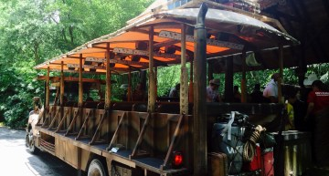 Disney's Animal Kingdom – Kilimanjaro Safari
