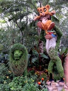 Epcot Flower Garden Festival 2014-2