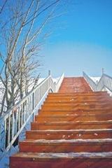 Восхождение к славе. Фото Екатерины Богдановой